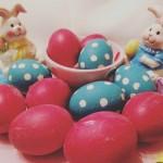 Τα αυγά μας!